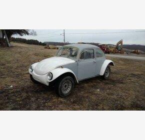 1973 Volkswagen Beetle for sale 100957881