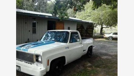 1977 Chevrolet C/K Truck for sale 100982182