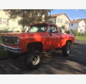 1977 Chevrolet C/K Truck for sale 100988476