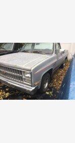 1983 Chevrolet C/K Truck for sale 101053006