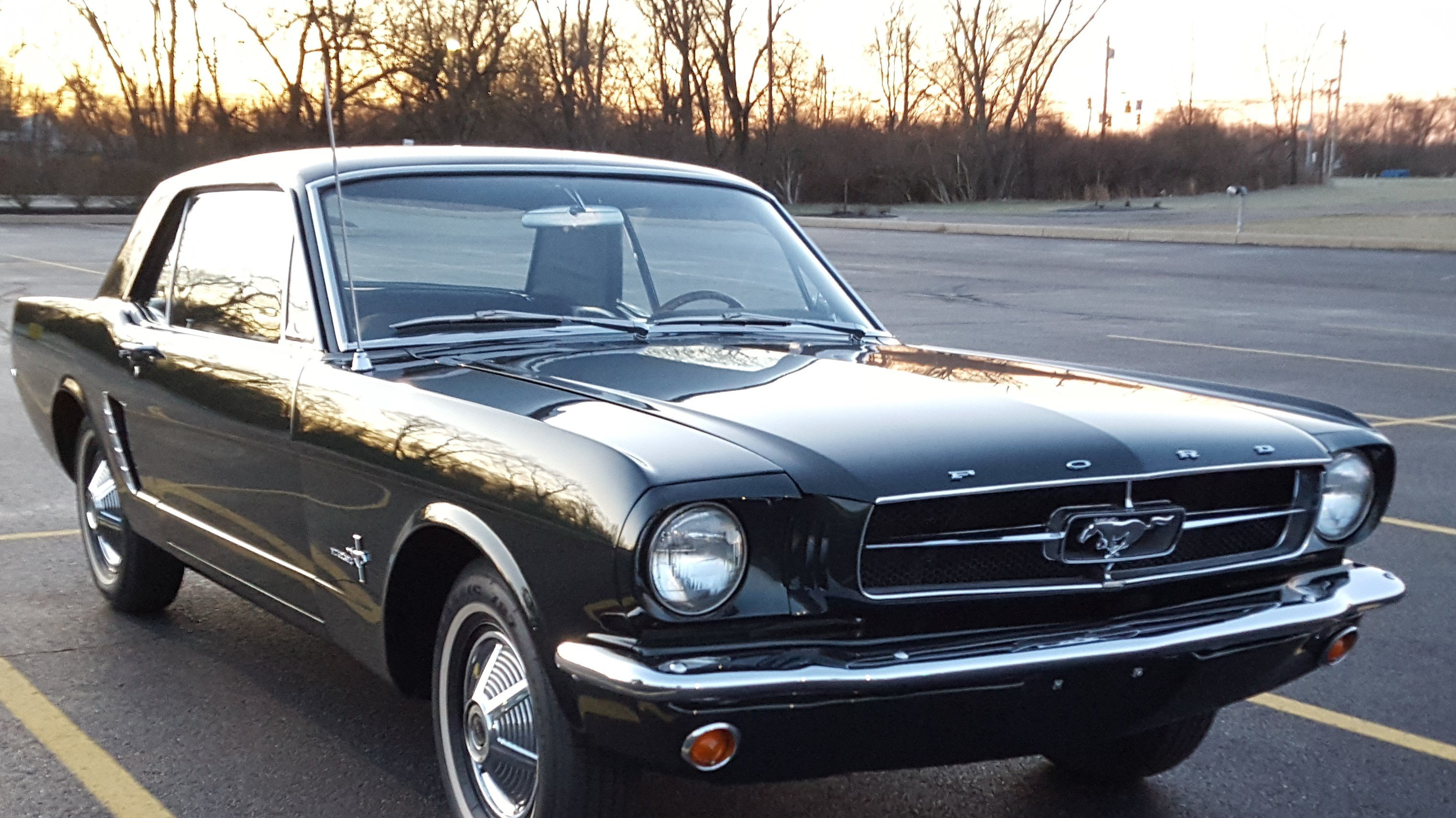 65 Mustang For Sale Craigslist California Craigslist Gold 1966