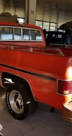 1977 Chevrolet C/K Truck for sale 101094299