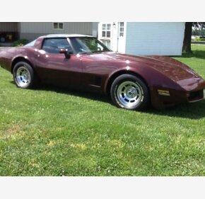 1981 Chevrolet Corvette for sale 101099376