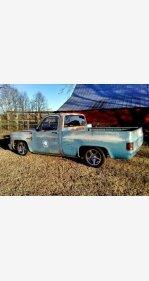 1982 Chevrolet C/K Truck for sale 101099381