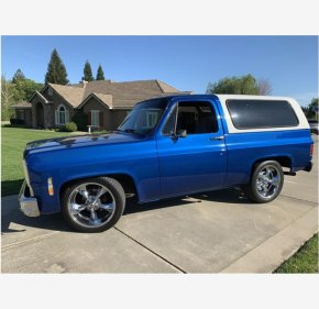 1979 Chevrolet Blazer for sale 101113678