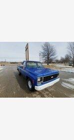 1978 Chevrolet C/K Truck for sale 101118416