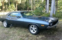 1974 Dodge Challenger for sale 101119220
