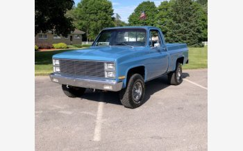 1981 Chevrolet C/K Truck for sale 101161625