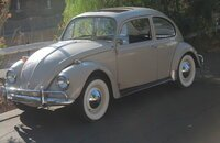 1967 Volkswagen Beetle for sale 101171149