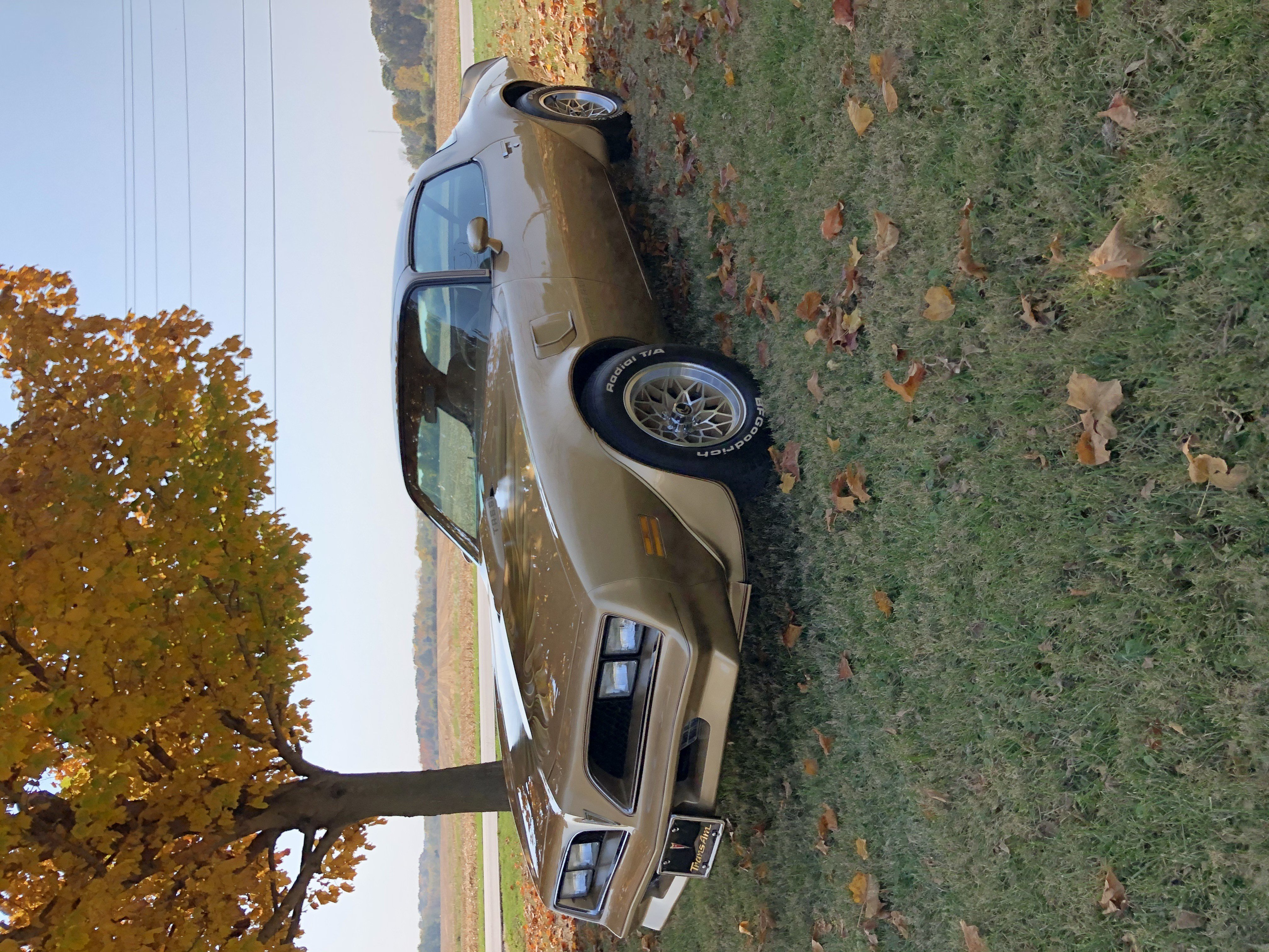 1978 Pontiac Trans Am For Sale Near West Lafayette Indiana 47906 Classics On Autotrader
