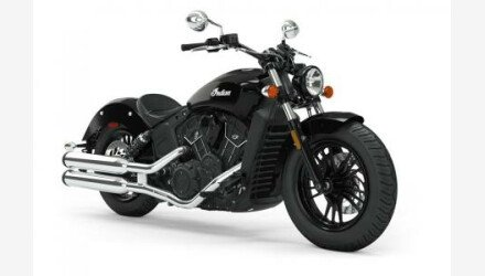 2019 Indian Scout for sale 200630980
