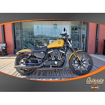2019 Harley-Davidson Sportster for sale 200639124