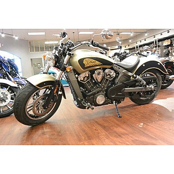 2019 Indian Scout for sale 200661710