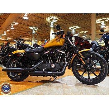 2019 Harley-Davidson Sportster Iron 883 for sale 200681955