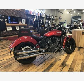2019 Indian Scout for sale 200701781