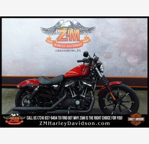 2019 Harley-Davidson Sportster for sale 200708184