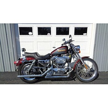 2001 Harley-Davidson Sportster 1200 Custom for sale 200708392