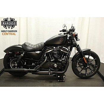 2019 Harley-Davidson Sportster Iron 883 for sale 200730940