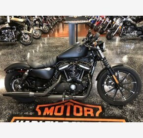 2019 Harley-Davidson Sportster for sale 200738324