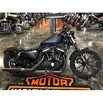 2019 Harley-Davidson Sportster for sale 200738324