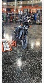 2019 Harley-Davidson Street 750 for sale 200742822