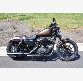 2019 Harley-Davidson Sportster for sale 200743450