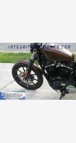2019 Harley-Davidson Sportster Iron 883 for sale 200759519